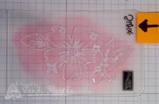 6-21-16 3 Colored Floral Affection folder