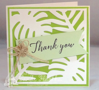 6-15-18 Tropical Chic notecard