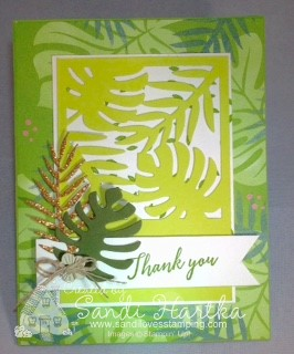 6-12-18 Tropical Chic card