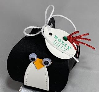 Penguin angle