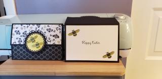 Teresa Sharron bees