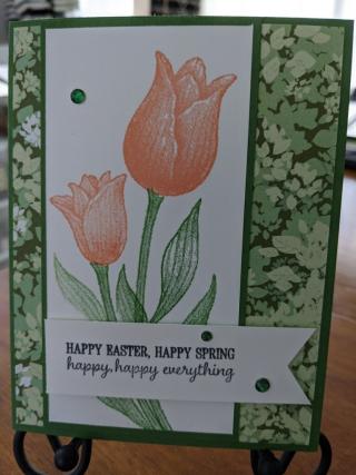 Beverly Corbett-Robbins - tulip