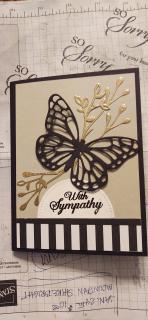 Anne leland butterfly