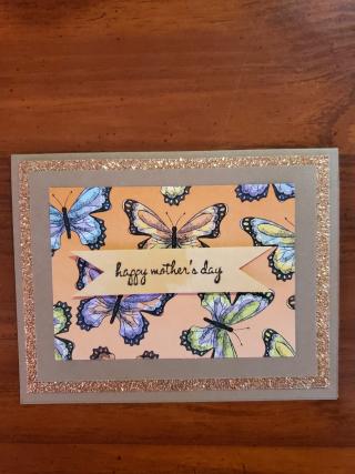 Stephany casper butterflies